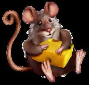 Frozen Feeder Mouse Sale! Reptile food