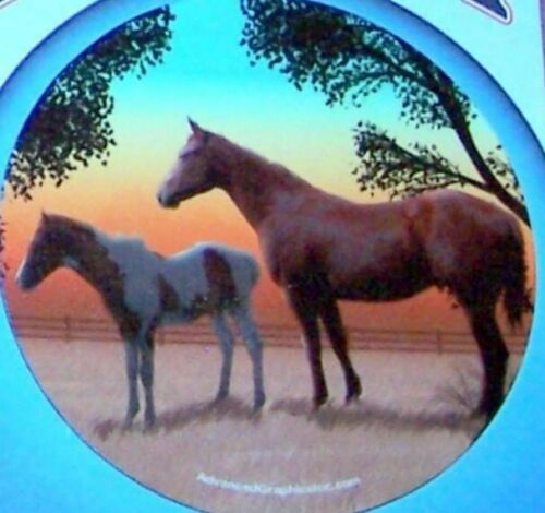 Mare and Colt Horses Vehicle or Fridge Plastic Magnet 5.5""