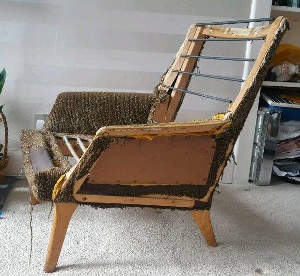 parker knoll armchair for reupholstery in morningside edinburgh
