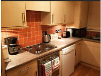2 single rooms to let very clean and tidy