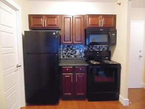 Fully Reno'd 1 Bdrm Across from the Public Gardens, just $1075!