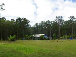 Private Nature Lovers Rainforest Sanctuary, Noosa Hinterlands Cootharaba Noosa Area Preview
