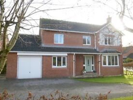 Luxury detached 4 bedroom house with conservatory & solar PV panels in Woodgrove, Dumfries