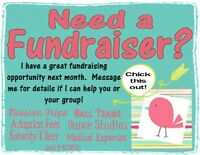 Looking for a fundraiser ?