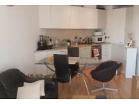 Beautiful 1 bedroom with river views, wooden floors, neutral decor in Naxos Building, London HPE018