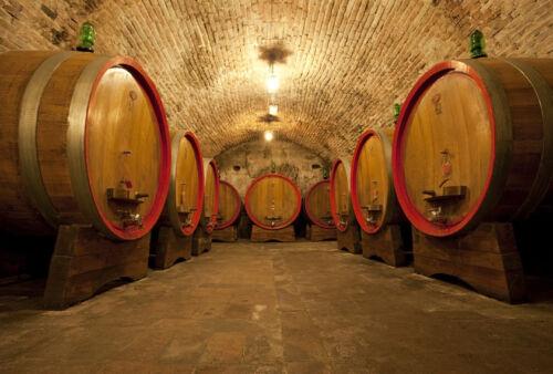 Kriterien für den Kauf von Kellereimaschinen für den professionellen Weinbau