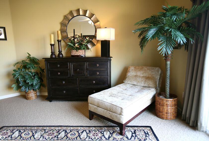 tipps f r die innenraumgestaltung mit phoenix palmen ebay