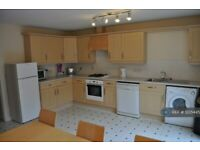 4 bedroom house in Richmond Court, Exeter, EX4 (4 bed) (#1235445)