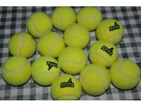 14 used tennis balls perfect as dog toys