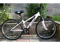 Apollo Jewel Junior Mountain Bike