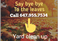 Yard clean up -say bye bye to the leaves!Eaves -windows cleaning