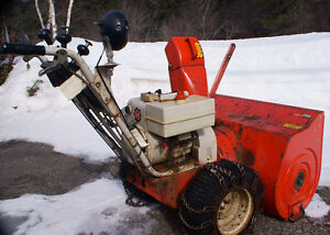 Arien Snowblower