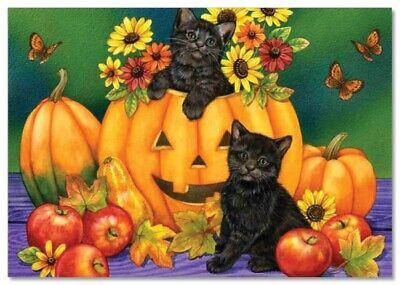 Funny pictures Cat kittens Animals Halloween Pumpkin ART Russian modern Postcard Halloween Funny Pictures