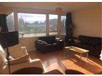 Large Double Room in Social Mile End Flat E3
