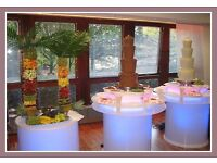 Commercial Chocolate Fountain & Fruit Palm Tree Business Opportunity