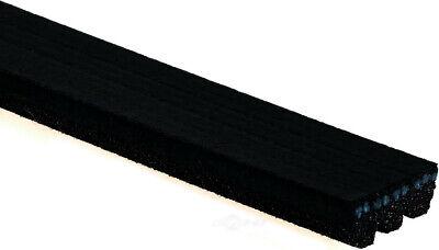 Serpentine Belt-Standard ACDelco Pro 3K300