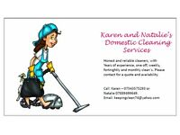 ** NEED A DOMESTIC CLEANER? **