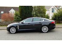 Jaguar XF 3.0 Diesel - Premium Luxury Model - 2011(61) - Showroom Condition - Stunning