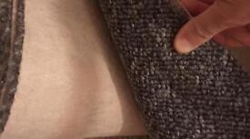 "8'2"" x 6'1"" grey carpet"