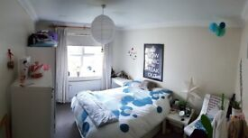 Large Double Room In Friendly & Tidy House