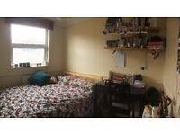 Double room in spacious Tufnell Park fl
