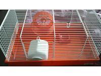 Red dwarf hamster cage