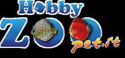 hobbyzoopet