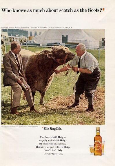 1965 Haig & Haig PRINT AD Scotch Vintage Bottle Bull at Oxfordshire Cattle Show