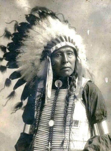 Chief Flying Hawk PHOTO Lakota Indian, Battle of the Little Bighorn Survivor
