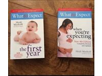 What to Expect books 1) When you're expecting 2) The first year