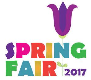 Mount. St. Mary Hospital Spring Fair