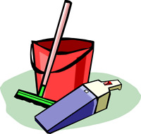 Experienced house cleaner and organizer
