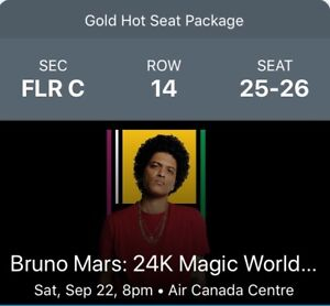 VIP GOLD HOT SEATS PACKAGE FOR BRUNO MARS CONCERT