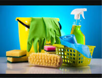 Professional + Pristine Residential Cleaning Service