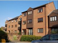 1 bedroom ground floor flat to rent
