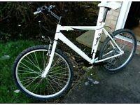 Mountain bike (like new)