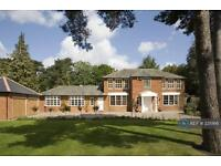 6 bedroom house in Coombe Hill Road, Kingston Upon Thames, KT2 (6 bed)