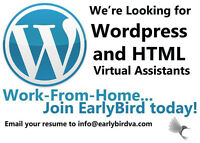 Do you have experience with HTML and Wordpress?