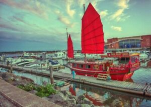 Hot Business - Chinese Junk Sailing Boat - Tourism Charter!