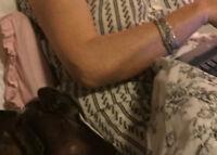 Ladies silver bracelet lost between Tsawwassen / Duke Point