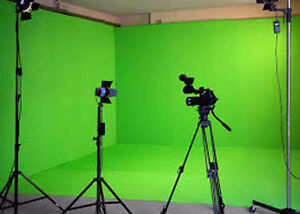 Seek Green Screen