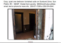 One Bedroom Furnished Suite at Sun Peaks, BC