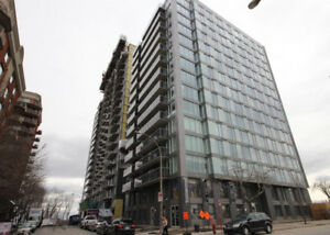 Downtown 2 bedrrom Condo (1 parking included) lease transfer