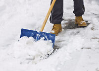 2 young guys lawn maintenance and snow removal