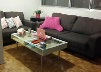 Coffee Table and 2 Sofas - Good Condition!