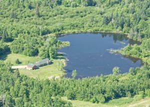 Beautifully crafted home on small private lake