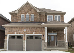New Detach House for Rent in Bowmanville
