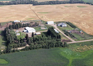 Horse Boarding 10 min from Beaumont or Leduc