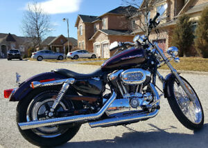 2007 Harley Sportster XL1200 Custom 3765 Orig KM MINT CONDITION