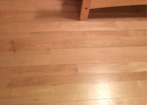 Unstained Maple Hardwood Flooring